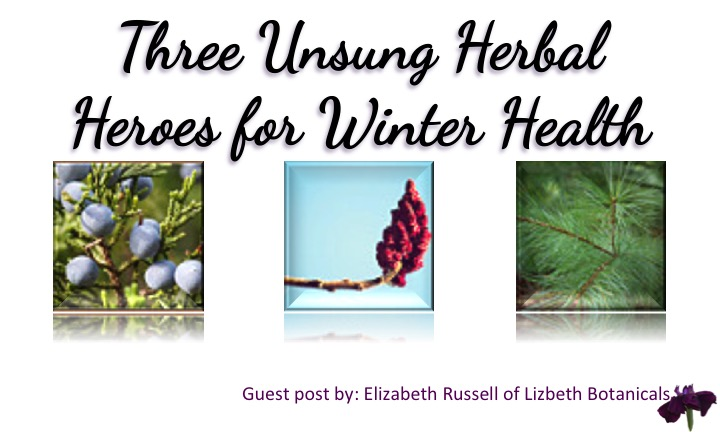 Three Unsung Herbal Heroes for Winter Health