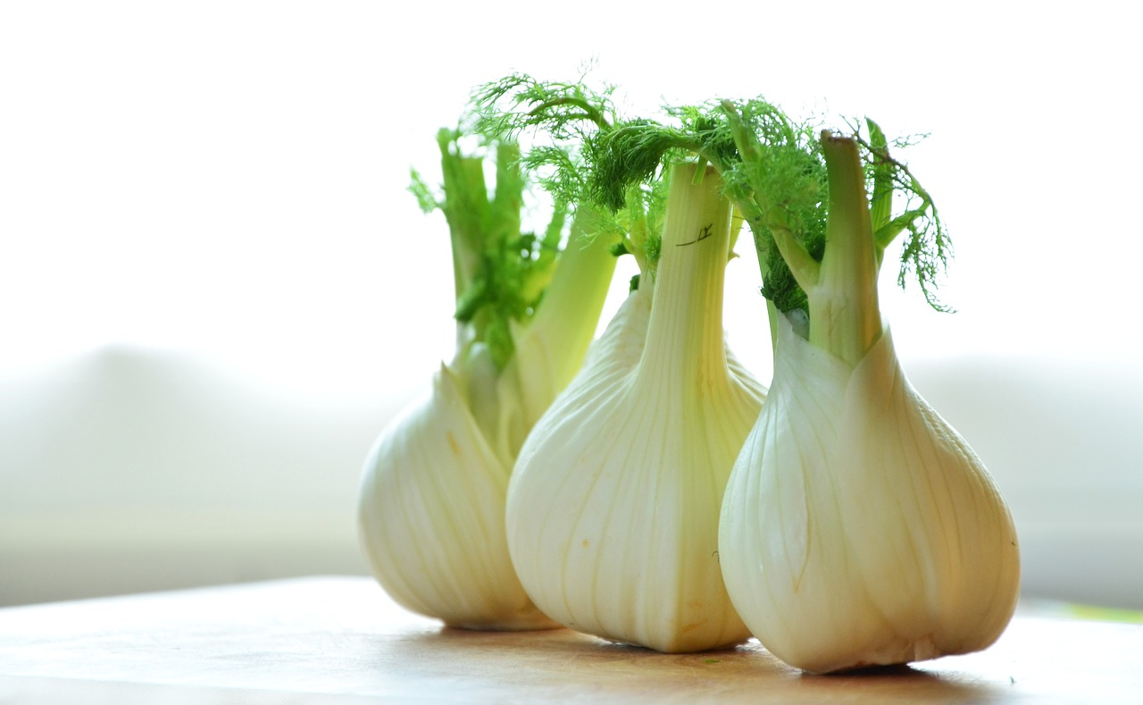 Fennel Essential Oil Safety